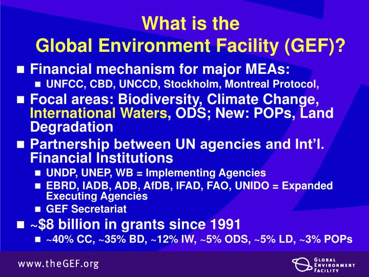 What is the global environment facility gef