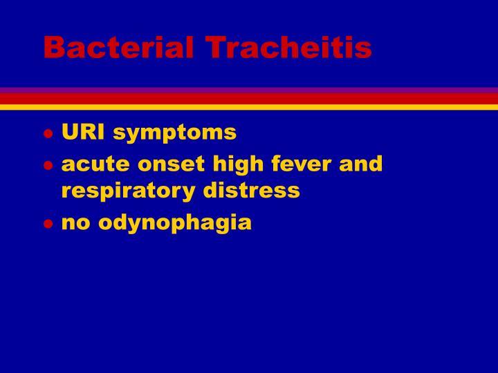Bacterial Tracheitis