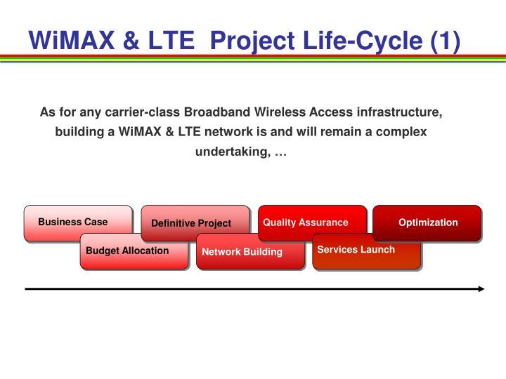 WiMAX & LTE