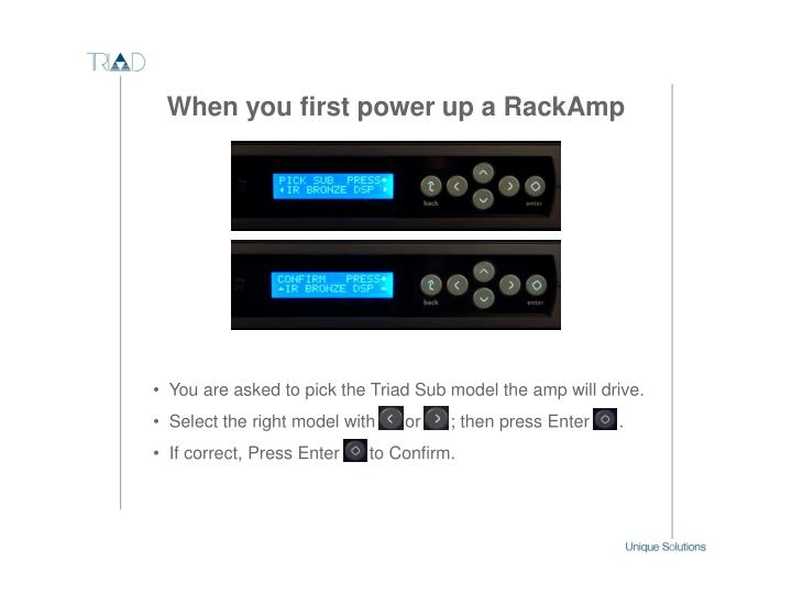 You are asked to pick the Triad Sub model the amp will drive.