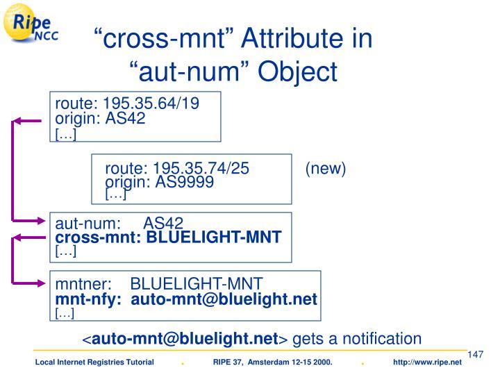 """cross-mnt"" Attribute in"