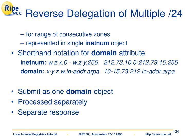Reverse Delegation of Multiple /24