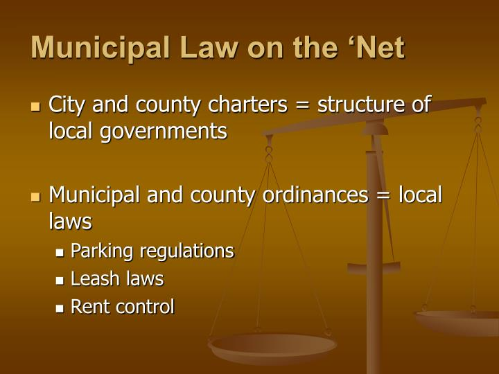 Municipal Law on the 'Net