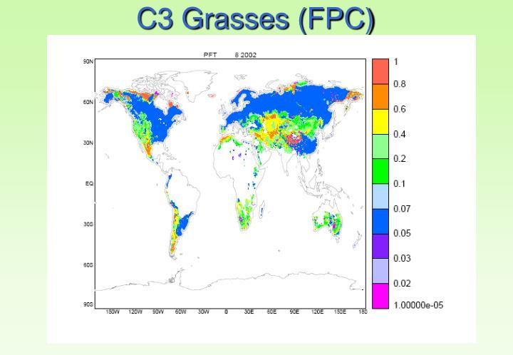 C3 Grasses (FPC)