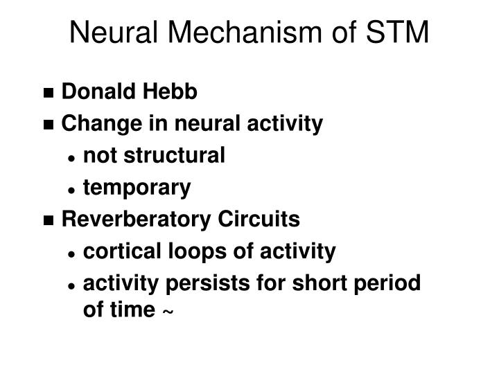 Neural Mechanism of STM