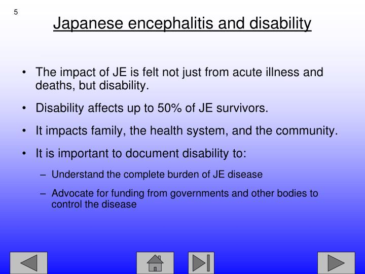 The impact of JE is felt not just from acute illness and deaths, but disability.