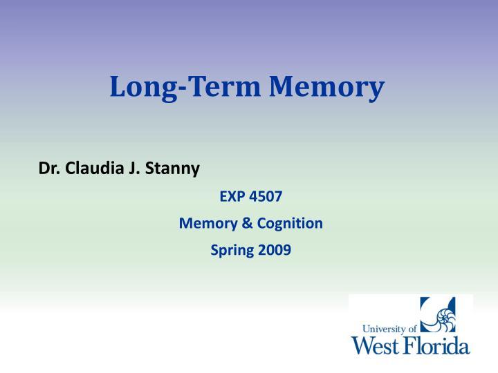 long term memory n.