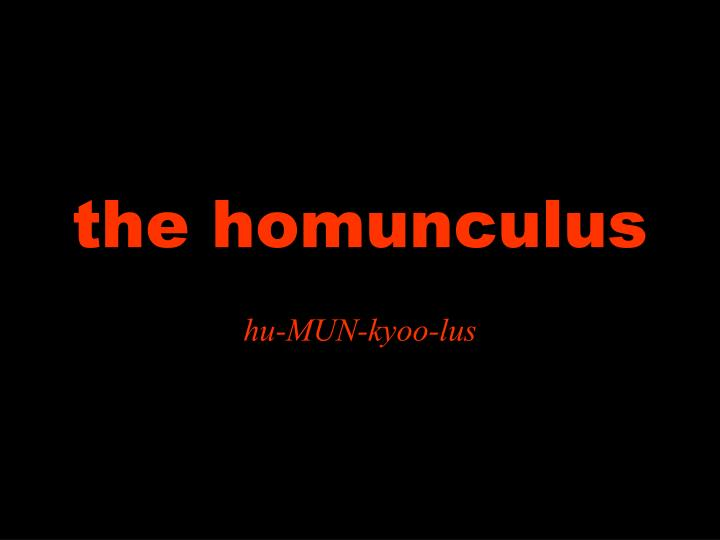 the homunculus n.