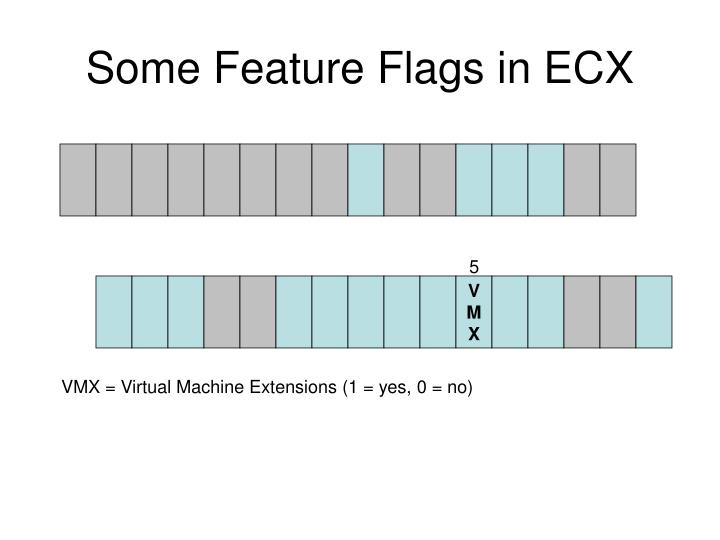 Some Feature Flags in ECX