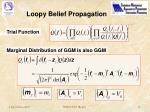 loopy belief propagation1