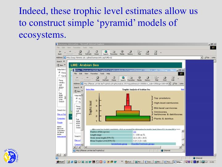Indeed, these trophic level estimates allow us to construct simple 'pyramid' models of ecosystems.