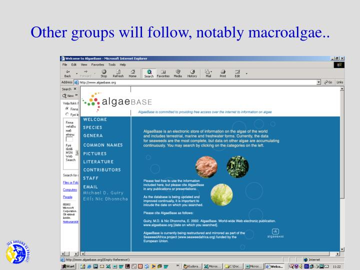 Other groups will follow, notably macroalgae..