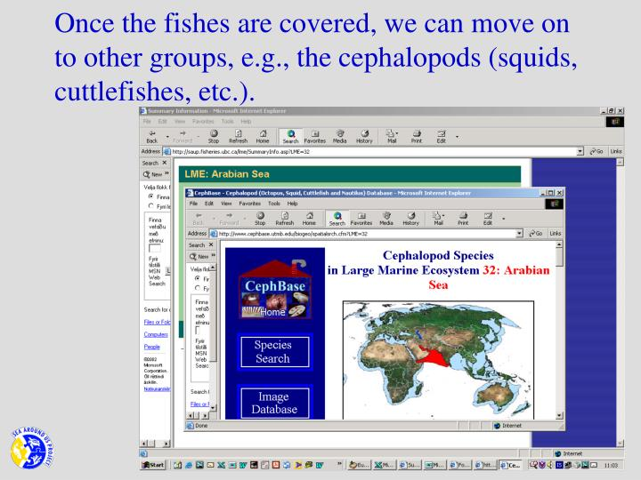 Once the fishes are covered, we can move on to other groups, e.g., the cephalopods (squids, cuttlefishes, etc.).