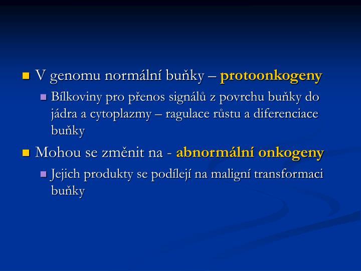 V genomu normální buňky –