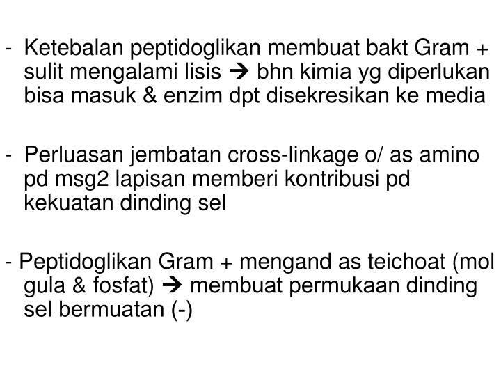 Ketebalan peptidoglikan membuat bakt Gram + sulit mengalami lisis
