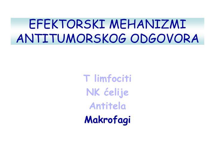 EFEKTORSKI MEHANIZMI ANTITUMORSKOG ODGOVORA