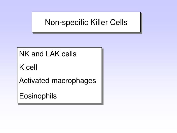 NK and LAK cells