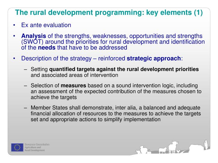 The rural development programming: key elements (1)
