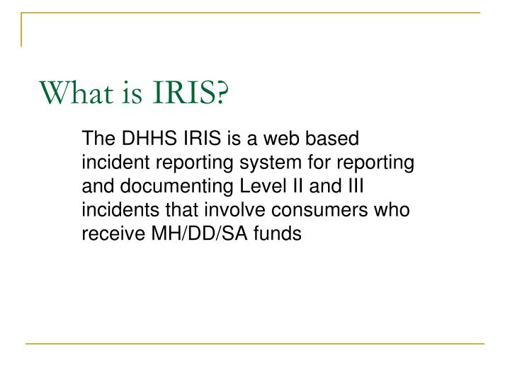 What is iris