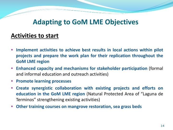 Adapting to GoM LME Objectives