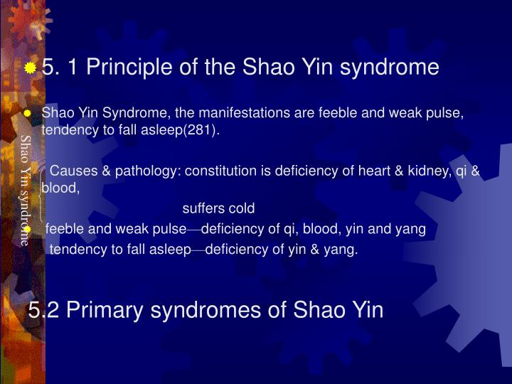5. 1 Principle of the Shao Yin syndrome