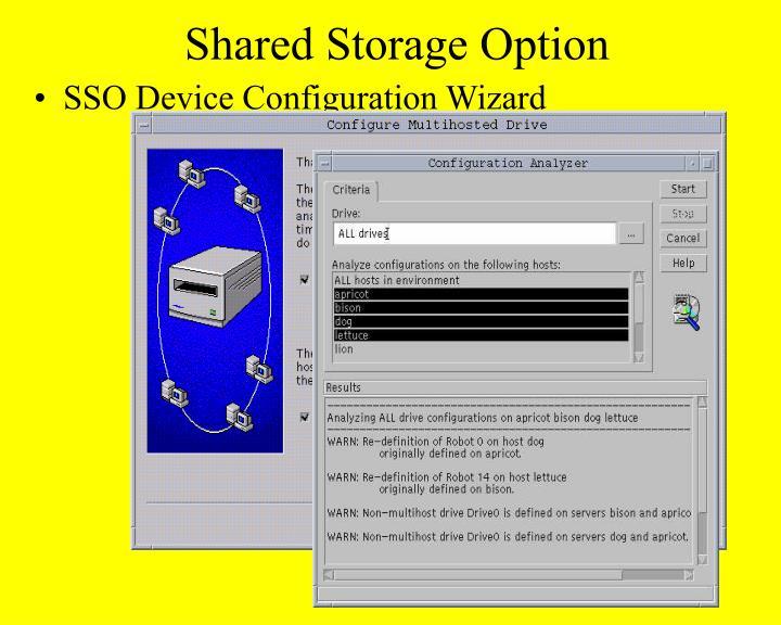 Shared Storage Option