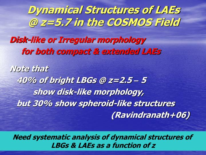 Dynamical Structures of LAEs