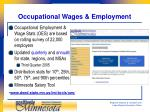 occupational wages employment