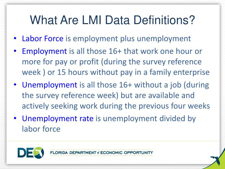What Are LMI Data Definitions?