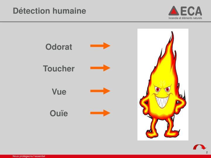 Détection humaine