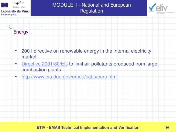 2001 directive on renewable energy in the internal electricity market