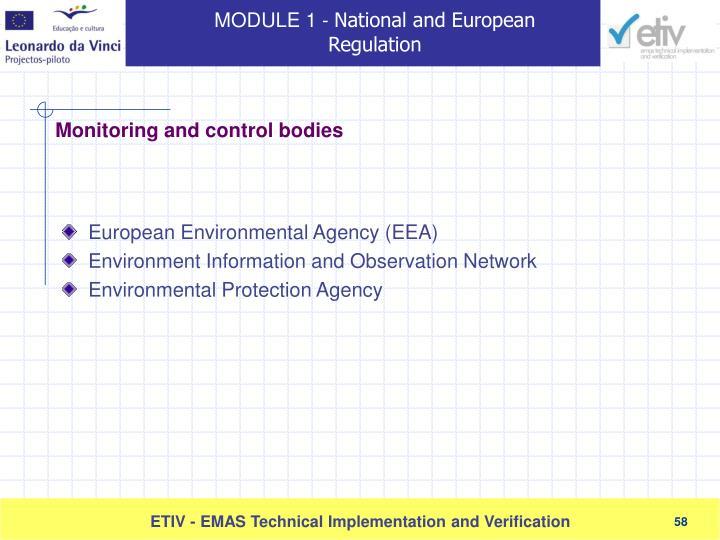European Environmental Agency (EEA)