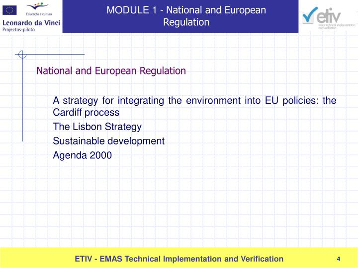 A strategy for integrating the environment into EU policies: the Cardiff process