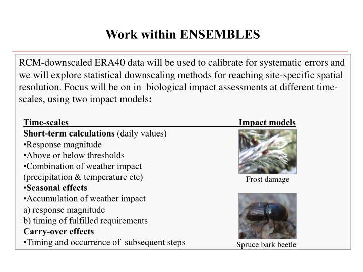 Work within ENSEMBLES