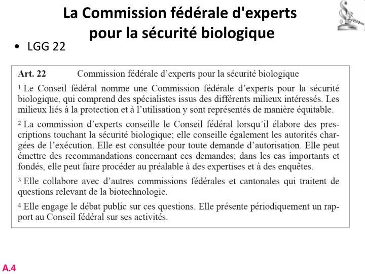 La Commission fédérale d'experts