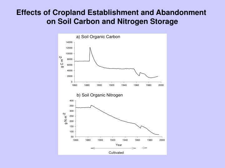 Effects of Cropland Establishment and Abandonment