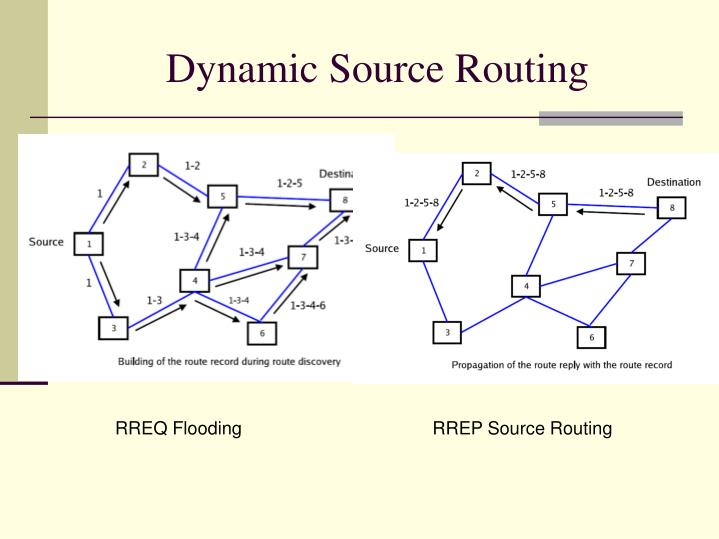 Dynamic Source Routing
