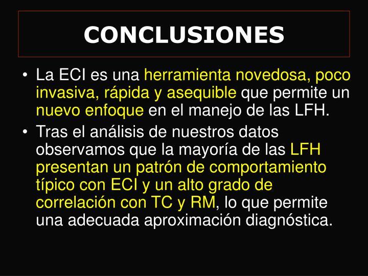conclusiones n.