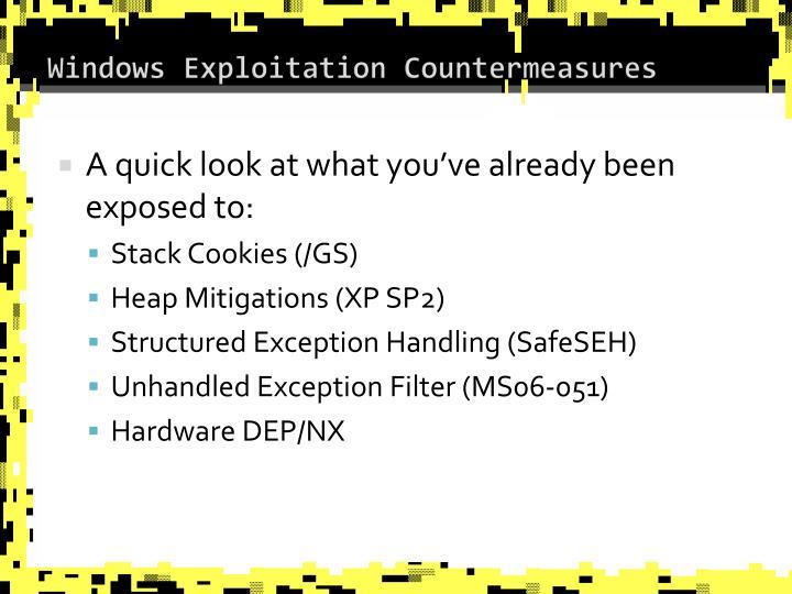 Windows Exploitation