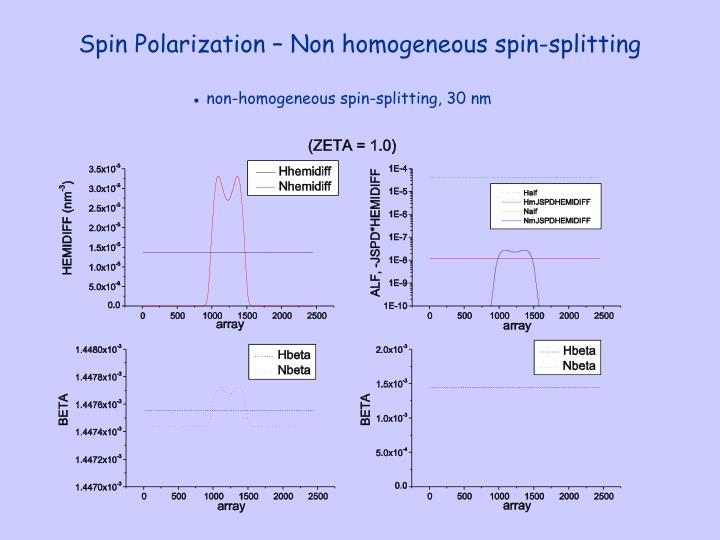 Spin Polarization – Non homogeneous spin-splitting