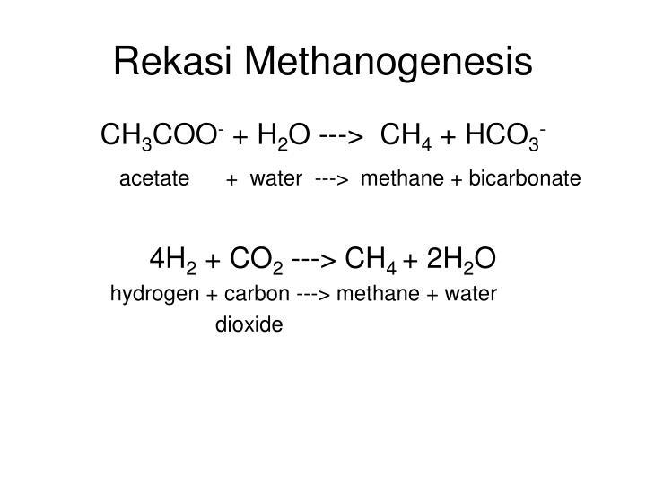 Rekasi Methanogenesis