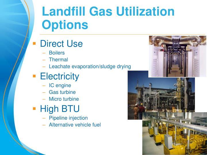 Landfill Gas Utilization Options