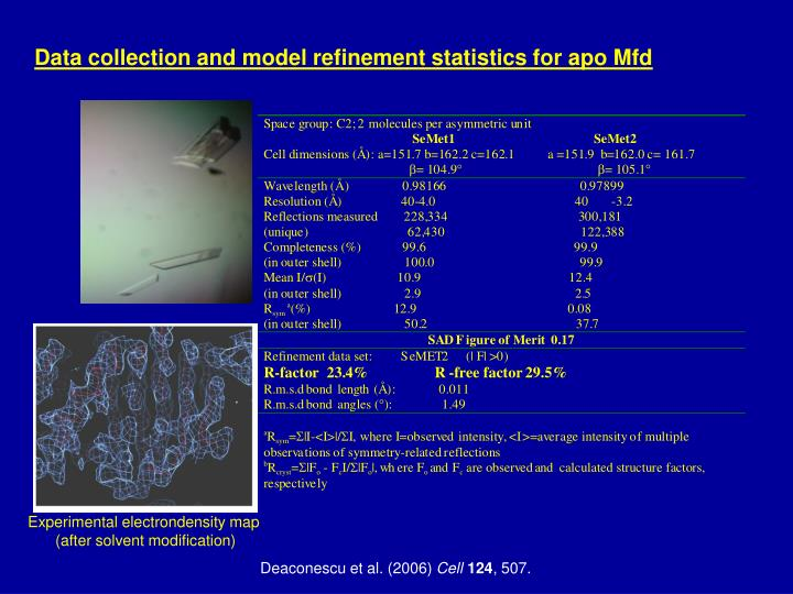 Data collection and model refinement statistics for apo Mfd