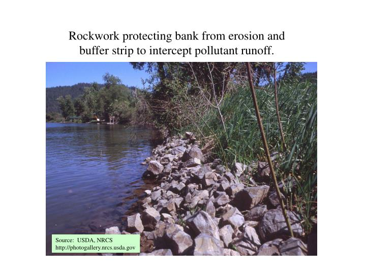 Rockwork protecting bank from erosion and buffer strip to intercept pollutant runoff.