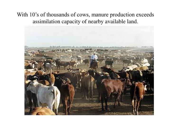 With 10's of thousands of cows, manure production exceeds assimilation capacity of nearby available land.