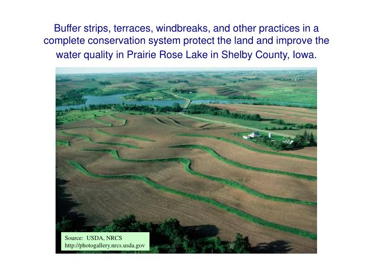 Buffer strips, terraces, windbreaks, and other practices in a complete conservation system protect the land and improve the water quality in Prairie Rose Lake in Shelby County, Iowa.