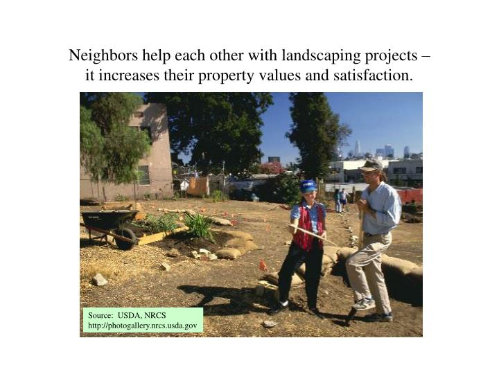 Neighbors help each other with landscaping projects –