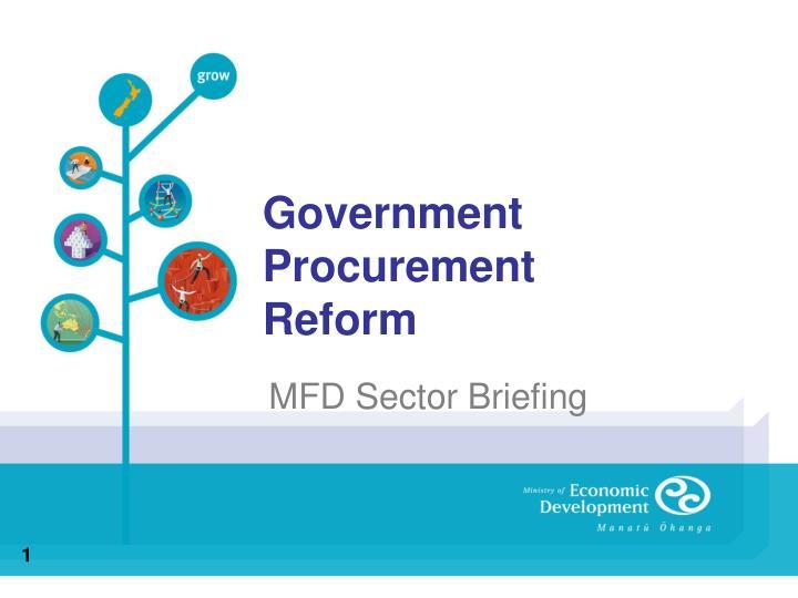 government procurement reform n.