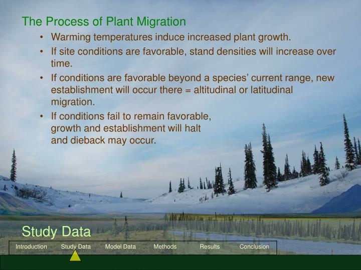 The Process of Plant Migration