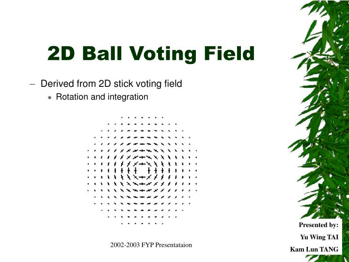 2D Ball Voting Field